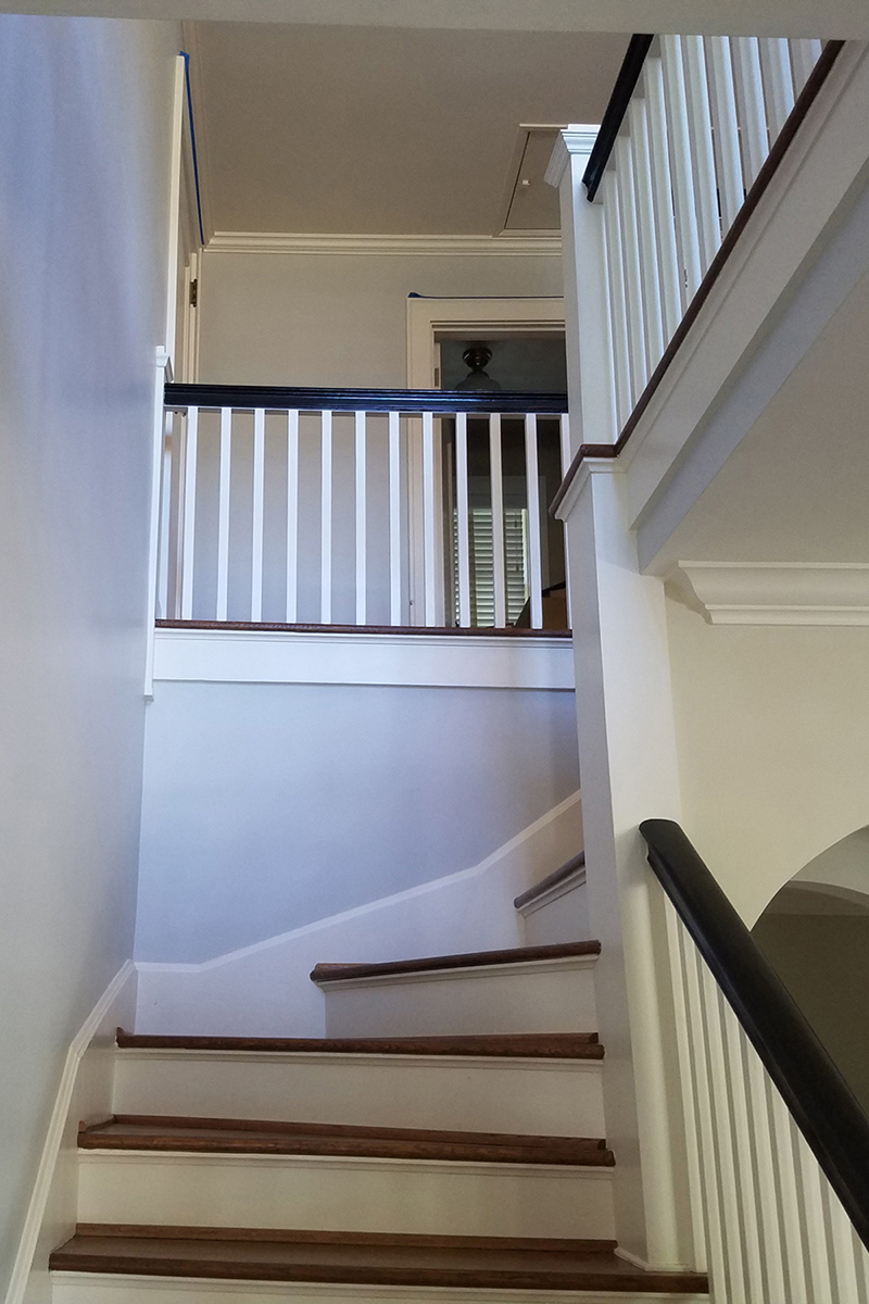 Freshly painted staircase with Ammonite paint